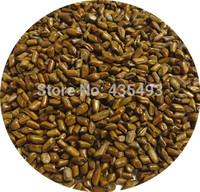 Cassia Tora Seeds Slimming Chinese Herb Jue Ming Zi Tea,500g