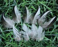 100Pcs/Lot!5-10cm Pheasant Feathers, Natural Black&white Silver Pheasant Plumage Feathers freeshipping