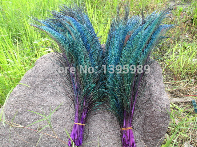 Free shipping 30-35cm/12-14inch Precious 100pcs natural Peacock Sword Perfect Design diy purple collect Decoration(China (Mainland))