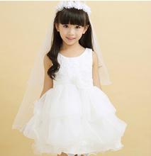 2014 Princess Dress Children Dress Flower Girl Dress Girls Dress Long White Dress Champagne Dress Pink Dress Under $50(China (Mainland))