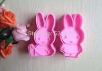 2 pcs/set Rabbit Shape Mold ( DIY Tool for bake)