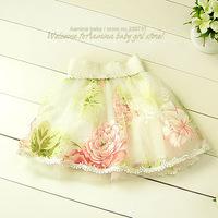 Nice!  Wholesale flower baby tutu skirt, girls skirts 2014 new summer fall ,5pcs/lot (#2613SK)