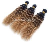 Wholesale---3pcs/lot Top Quality   Human Hair Brazilian Gradually Choose Color  Loose Wave Beautiful Virgin Hair Free Shipping.