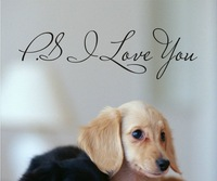 PS I Love You - Wall Art Decal - Home Decor - Famous & Inspirational Quotes 30 pcs =49.99USD