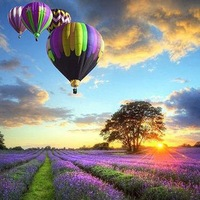 Lavender hot balloon 5d quality square drill diamond painting diamond painting rhinestone pasted painting