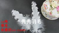 10-15cm Curly White Goose Feather, 100pcs / lot Wedding Shoes Decoration, Wedding Decor