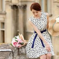 Women's Dress New 2014 Summer Designer Women Casual Print Dress