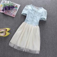 free shipping/2014 new arrival/hot sale women dress/2014 summer dresses/fashion designer/ dr004