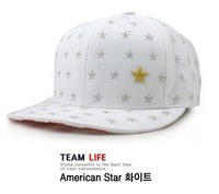 Drop Shipping American Flag Five Star Cap Hip-hop Baseball Hot Summer Fitted Cap Outdoor Plain snapback caps Hats MLJ-29