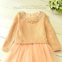 Wholesale, princess kids girl dresses,2014 new fall princess dress, 5 pcs/ lot (#8016)