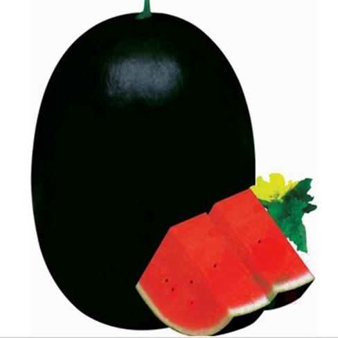 20seeds/bag black tyrant king super sweet watermelon large heavy anti- yielding super sweet watermelon new goods(China (Mainland))