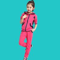 hot selling good quanlity Children's clothing female child autumn set 2014 autumn child clothes child sports sweatshirt twinset
