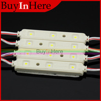 3.6W Car Boat Waterproof DC 12V Highlight 12 LED 3 SMD 3528 Injection Molding Modules Cool White String Light Lamp Bulb