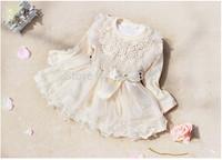 Retail- Autumn Lace Baby girls dress Baby Girl Clothes Kids Dress Kids clothes Girl Wear vestidos infantis, vestidos de menina