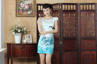 2014 new arrival Hot Sale Chinese Traditional Dress Charactizing pattern Cheongsam size :S-XXL