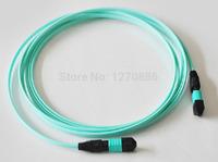 24 core mpo-mpo-om3  3 meters MPO/MTP patch cord