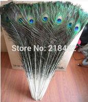 Free shipping Hot! 50 PCS beautiful natural peacock feathers eyes 90-100 CM