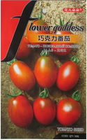Free Shipping 1Pack Chocolate Tomato Seeds fruit vegetables Seeds