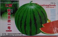 Free Shipping 1Pack Jingxin No.1 Water Melon Seeds fruit Seeds