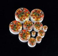 Free shipping 1 Pair resin fashion ear tunnel plug ear piercing body jewelry EK172