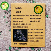Rosemary  seeds - 20 pcs