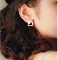 South Korea Rhinestone D letter Flower Earrings natural shell an elegant and delicate little Daisy earrings