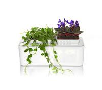 New year hydroponic wholesale smart home box mini indoor garden