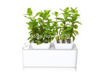 New year hydroponics grow products mini garden planter