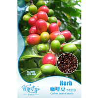 Free shipping one pack 10 pcs of herb seed coffee bean seeds
