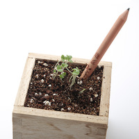 2014 New Arrival Pencil With A Seed Sprout Pencil With Herb Pack/Flower Pack/Rainbow Pack Seed