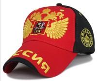 2014 new baseball hat men and Ms. golden wings peaked cap chun xiaqiu winter outdoor sports cap