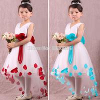 2014 summer lace flower girls dresses,frozen infant princess dress ,kids & baby party dress, formal dress for chirldren girls