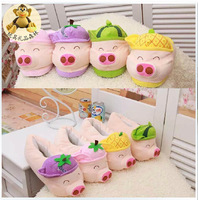 2014 new women slipper, cute cartoon pig McDull winter home warm cotton slippers floor girl heel Animals slippers package