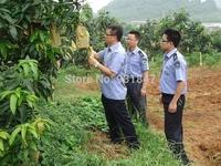 Agriculture Wholesale 17*21CM Double Layer Fruit Bagging Mango Bag  Mango Grow Bag Waterproof Insect-resistant 5000PCS