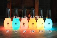 200pcs DHL free shipping Nail Enamel 12 Color 15ml Nail Polish Fluorescent Luminous Neon Nail Polish Glow in Dark Nail Varnish