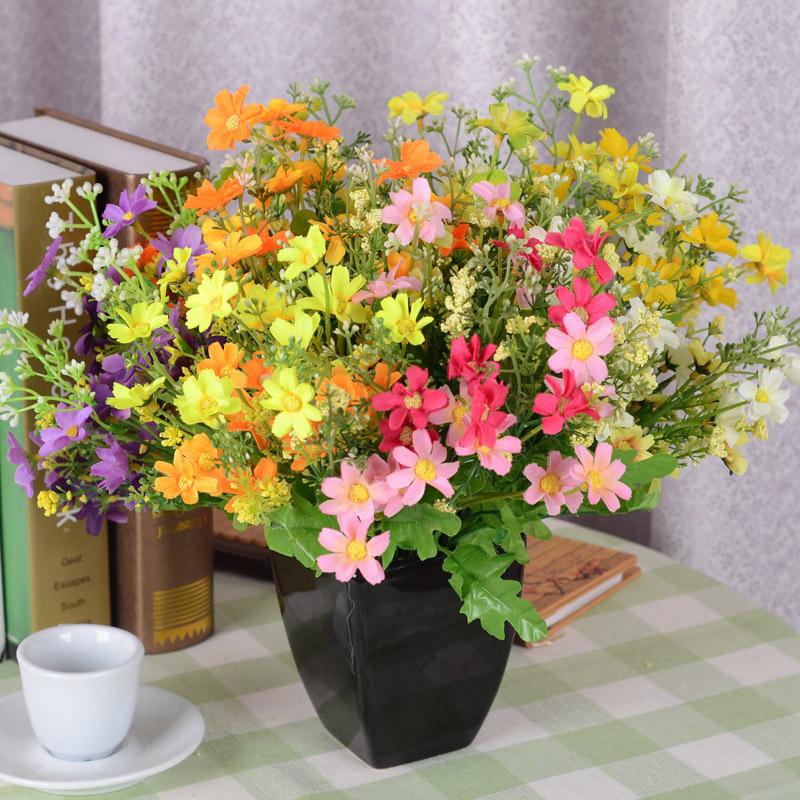 Цветы для дома цветы