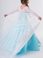 new arrival Frozen Elsa dress Anna costume princess queen cosplay summer girl clothes 5 sizes/lot