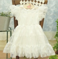5pieces/lot, Summer Tulle Little Girl Dress For Kids Clothes Children Lace Dress Pink White, A-ar016