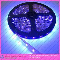 DC12V  5M/Roll Non-Waterproof 300LEDs 3528SMD 60led/m Flexible LED Ultraviolet/Purple/UV Strip Light 395NM-405NM