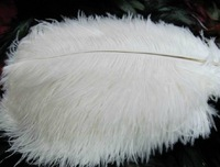 EMS Free Shipping 500pcs White Ostrich Feathers 20-25cm 8-10 inch Ostrich Plumes for wedding Center pieces,Dress accessory