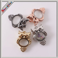 Wholesale 2014 hot sell 45mmX32mm Owl floating living locket glass box pendants