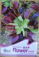 10PCS Potted Insectivorous Plant Seeds Dionaea Muscipula Giant Clip Venus Flytrap Seeds