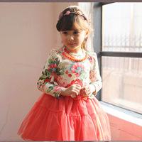 girls dresses summer 2014 baby girls floral casual dress kids lace dress cute Children Clothing  2 colors fashion dress TQ006