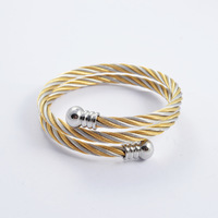 Trendy Wild steel Double color double bracelets   women's  simple bracelet High-grade bangle jewelry