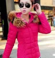 Coat Jacket Women Cotton Down Luxury Large Fur Collar With Hood Coat Short Thick Outerwear Plus M -3XL 2014 Autumn Winter B2002