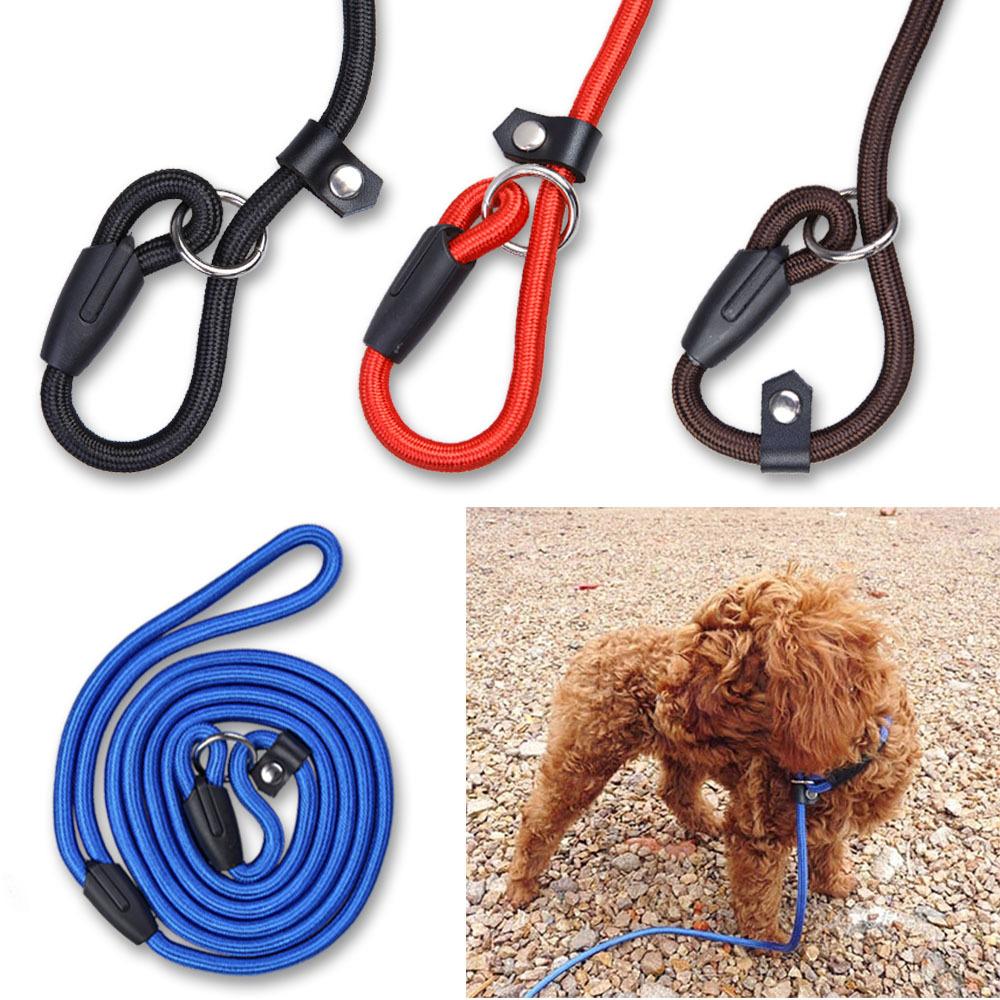 Pet Dog Nylon Adjustable Training Lead Dog Leash Dog Strap Rope Traction Dog Harness Collar Leash(China (Mainland))