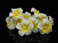 50Pcs Hawaiian Plumeria Foam White Pearl Flower Girl Prom Hair Pins