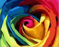 Colored Rose Oil Painting DIY Paint by Numbers 50x40cm (20x16'') PBN BW7331