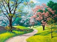 Flowering Season Oil Painting DIY Paint by Numbers 50x40cm (20x16'') PBN LG7150