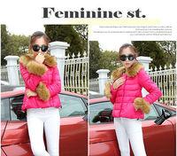 New 2014 Brand Winter Fur Collar Down Jacket  Women Slim Down Jacket High quality Women Blouse Coat Solid Color Jaqueta Feminina